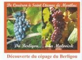 Rétrospective 2012 Février :Découverte du Cépage Berligou et du passé viticole Stéphanois