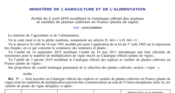 LE MELON Rouge (R) alias MELON DE BRETAGNE AU CATALOGUE OFFICIEL DES VARIETES DE VIGNES DEPUIS LE 2 AVRIL (Décret du Ministère de l'agriculture et de l'alimentation).
